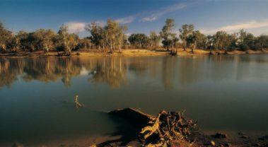 murray-river-790x435